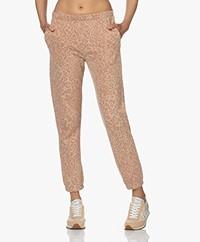 Ragdoll LA Leopard Print Sweatpants - Gold Leopard