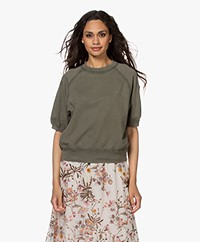 Drykorn Alenne Short Sleeve Sweatshirt - Green