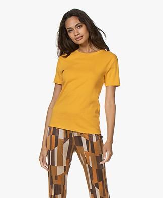 Petit Bateau Basic T-shirt in Cotton - Boudor