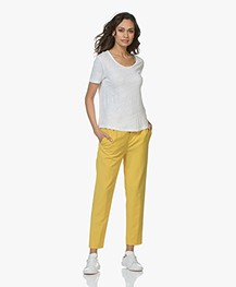 Drykorn Find Taps Toelopende Wolmix Pantalon - Geel