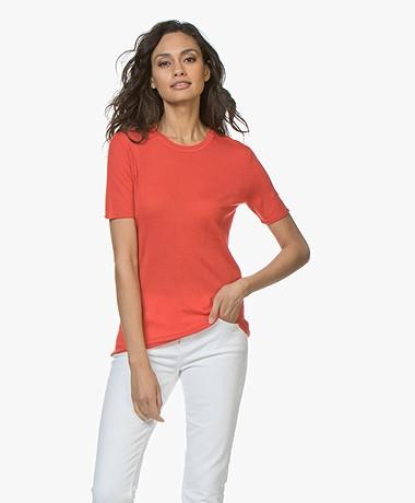 Joseph Cashair Pure Cashmere T-shirt - Tomato