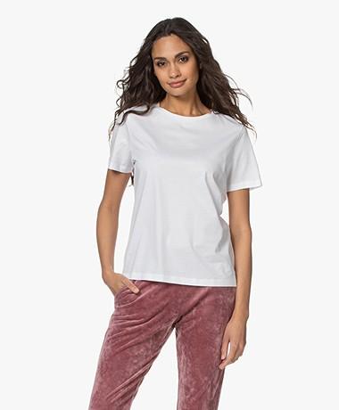 Drykorn Anisia Basic Katoenen T-Shirt - Wit