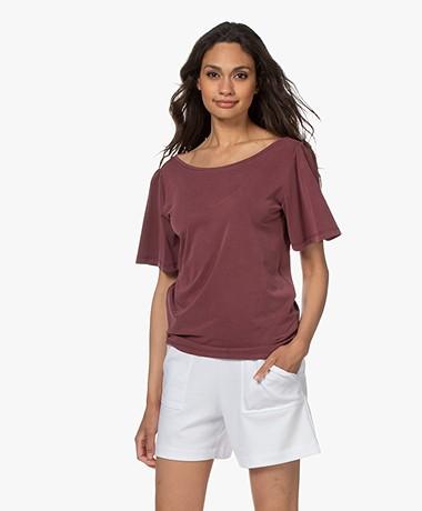 Plein Publique La Vie Modalmix T-shirt met Vlindermouwen - Wine