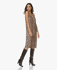 Equipment Jules Satin Leopard Slip Dress - Black/Brown