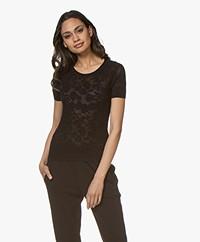 Rag & Bone Perry Burn-out Floral Print T-shirt - Black