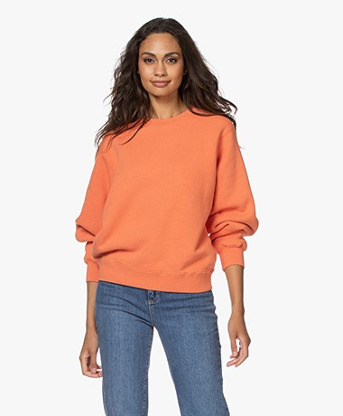 American Vintage Ibowie French Terry Sweatshirt - Butternut
