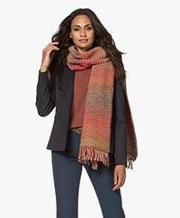 LaSalle Moss Knit Gradient Scarf - Multi
