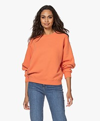 American Vintage Ibowie French Terry Sweatshirt - Butternut