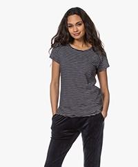Closed Striped Cotton T-Shirt - Dark Night