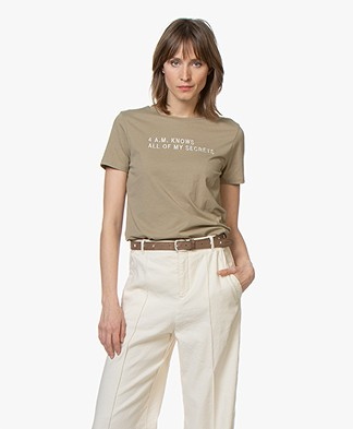 BOSS Tasecrets Embroidered T-shirt - Bright Green