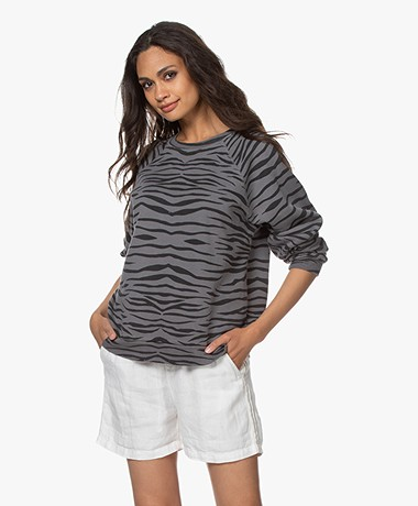 Ragdoll LA Distressed Zebra Print Sweatshirt  - Anthracite