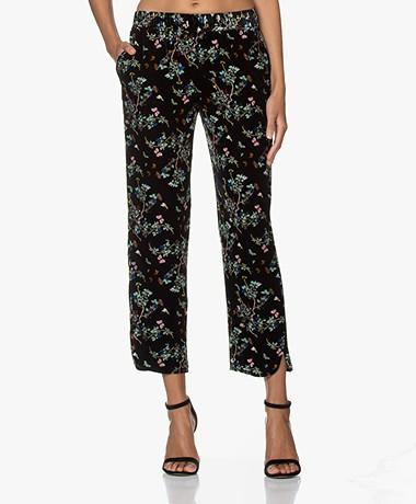 Zadig & Voltaire Poppy Printed Velvet Pants - Black