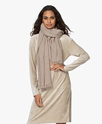 Drykorn Mikula Delicate Cashmere Blend Scarf - Beige