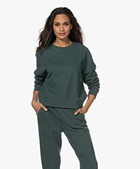 Rails Alice French Terry Sweatshirt - Forest