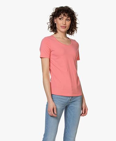 Repeat Cotton Basic Round Neck T-shirt - Flamingo