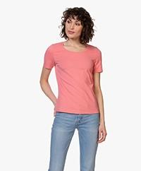 Repeat Katoenen Basis Ronde Hals T-shirt - Flamingo