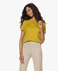 Drykorn Anisia Katoenen T-shirt - Geel