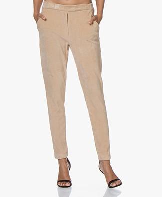 Josephine & Co Gerrit Jersey Velvet Ribbed Pants - Sand