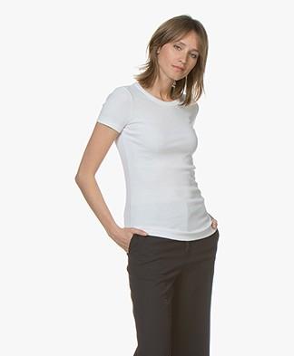 Petit Bateau R-hals T-Shirt in Katoen - Wit