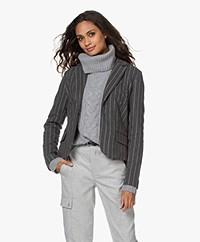 Josephine & Co Jenny Jersey Pinstripe Blazer - Grey