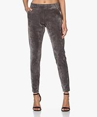 Woman by Earn Bobby Velours Jersey Sweatpants - Grey
