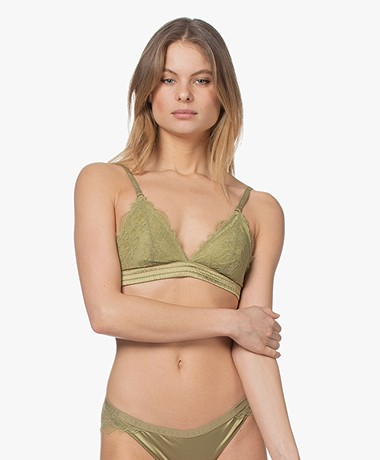 Love Stories Padded Darling Lace Bralette - Olive