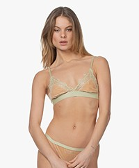 Love Stories Love Lace Bralette - Rosemary