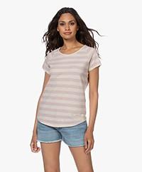 Closed Striped Raglan T-shirt - Icy Verbena