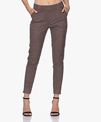 Josephine & Co Joseph Stretch Suedine Pants - Grey