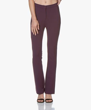 Kyra & Ko Faylinn Crepe Jersey Pants - Plum