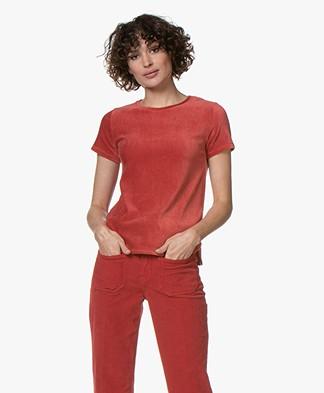 Majestic Filatures Corduroy Jersey T-shirt - Chili