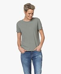 American Vintage Vegiflower Organic Cotton T-shirt - Olive