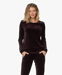 HANRO Favourites Velvet Sweatshirt - Alexandrite