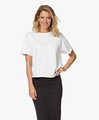 Drykorn Lunie Short Sleeve Sweatshirt - Ecru