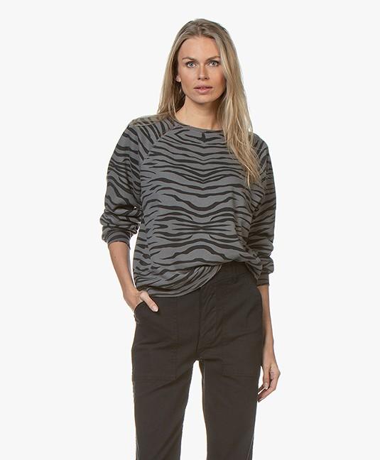 Ragdoll LA Distressed Zebra Print Sweatshirt - Anraciet