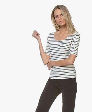 no mans land Viscose Gestreept T-shirt met Halflange Mouwen -  Ivory/Dark Sapphire