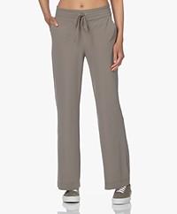 JapanTKY Myza Straight Travel Jersey Pants - Olive
