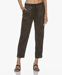Plein Publique Lavande Viscose Printed Pants - Zebra