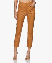 Kyra & Ko Jara Faux Leather Pants - Gold Spice