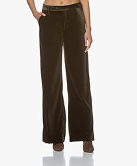Closed Lyn Velvet Wide Leg Pants - Sea Tangle