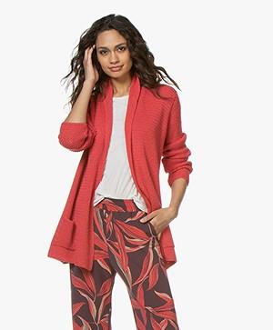 Belluna Kara Open Cardigan with Shawl Collar - Coral