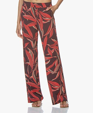no man's land Jersey Printed Pants - Grape Juice