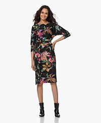 LaDress Caroline Travel Jersey Floral Printed Dress - Multi-color