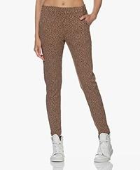 Kyra & Ko Odet Jersey Dot Print Pants - Chocolate
