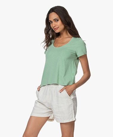 indi & cold Cropped A-line T-shirt - Basilico