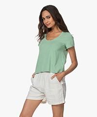 indi & cold Cropped A-lijn T-shirt - Basilico