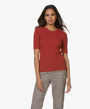 Repeat Cashmere Rib Short Sleeve Sweater - Spice