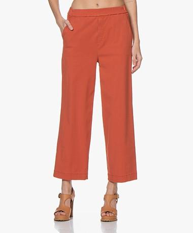 LaSalle Wide Leg Lyocell Blend Pants - Rust