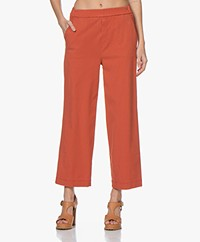 LaSalle Wide Leg Lyocell Blend Pants - Rust