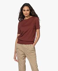 Plein Publique La Femme Pointelle Short Sleeve Pullover - Burned